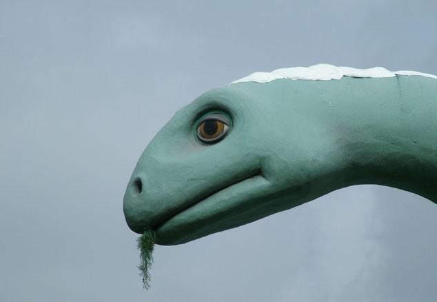 blogga 1254, cina, dinosauri